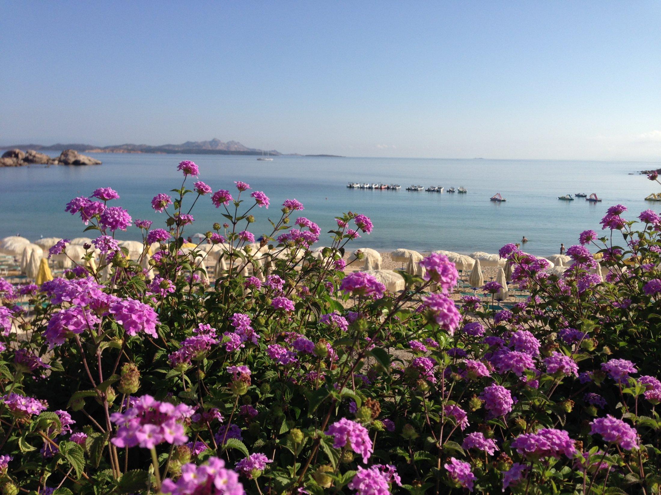 Baja Sardinia, Spiaggia.