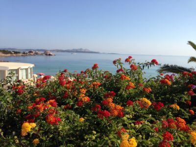 "<a href=""https://www.google.it/maps/place/07021+Baja+Sardinia+OT/@41.1397221,9.4775996,280m/data=!3m1!1e3!4m5!3m4!1s0x12d94148e3b92645:0xb3026073268d848f!8m2!3d41.1402366!4d9.4762976""><b>Baja Sardinia </b></a>"