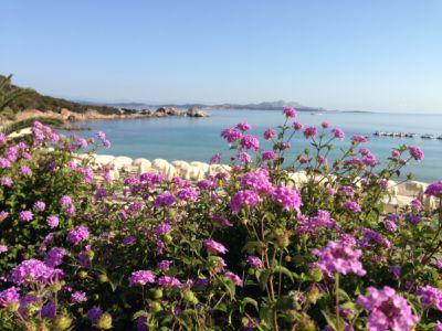 """<a href=""""https://www.google.it/maps/place/07021+Baja+Sardinia+OT/@41.1394864,9.4775493,280m/data=!3m1!1e3!4m5!3m4!1s0x12d94148e3b92645:0xb3026073268d848f!8m2!3d41.1402366!4d9.4762976""""><b>Baja Sardinia,spiaggia . </b></a>"""