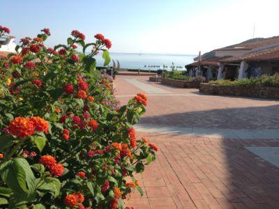 "<a href=""https://www.google.it/maps/place/07021+Baja+Sardinia+OT/@41.1394864,9.4775493,280m/data=!3m1!1e3!4m5!3m4!1s0x12d94148e3b92645:0xb3026073268d848f!8m2!3d41.1402366!4d9.4762976""><b>Baja Sardinia</b></a>"